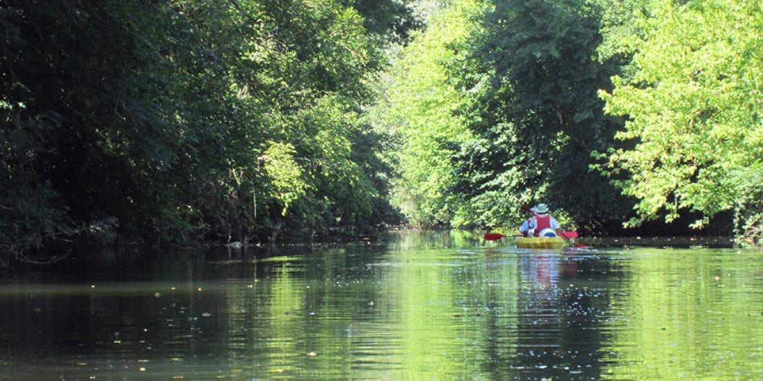 Camping La Dordogne Verte : Canoe Riviere 3