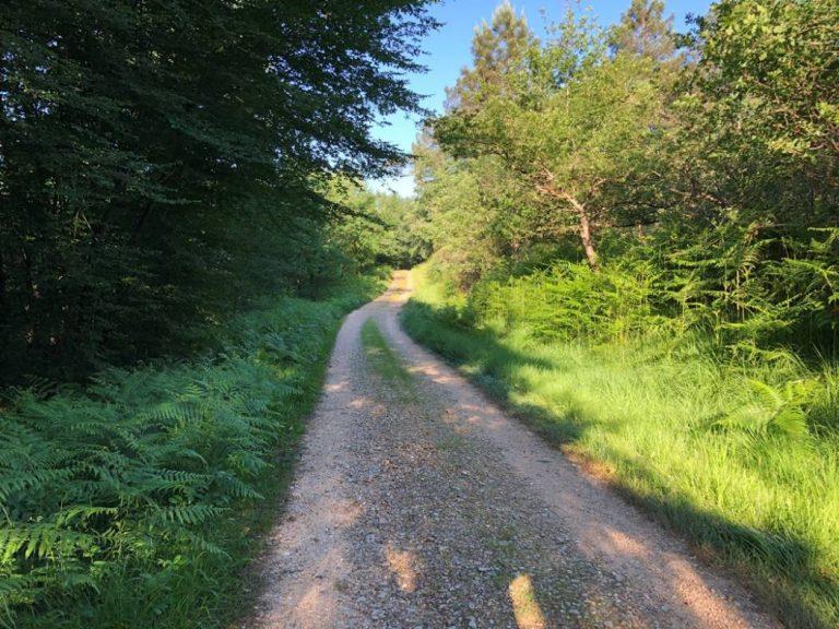 Camping La Dordogne Verte : Rando Montpon