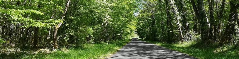 Camping La Dordogne Verte : Sentier Randonnee 2927797014