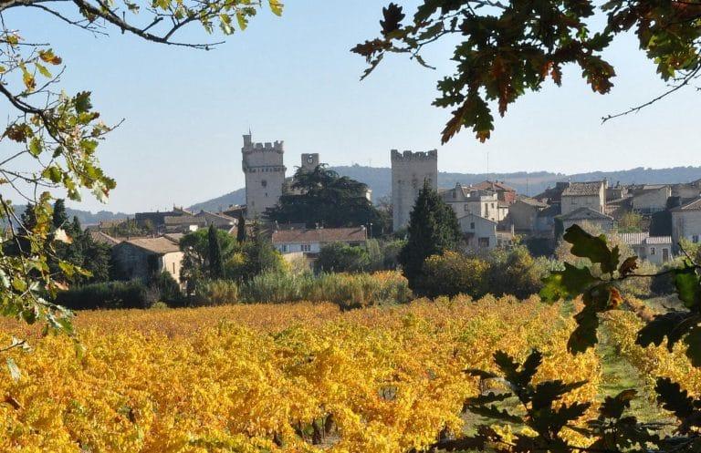Camping La Dordogne Verte : Cognac Decroix (st Laurent Des Combes)