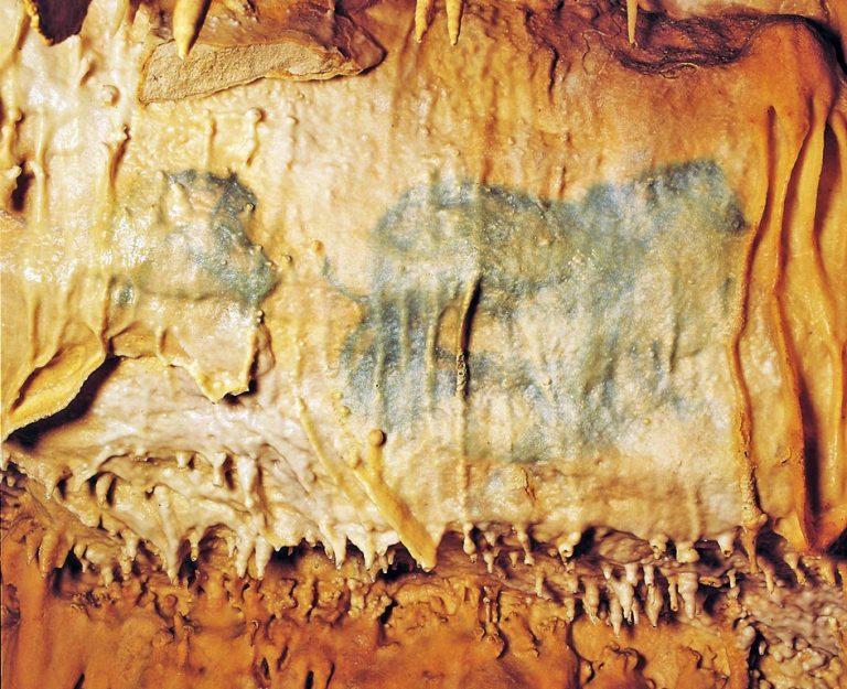 Camping La Dordogne Verte : Grotte De Villars